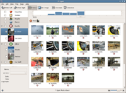 F-Spot photo manager (Linux only)
